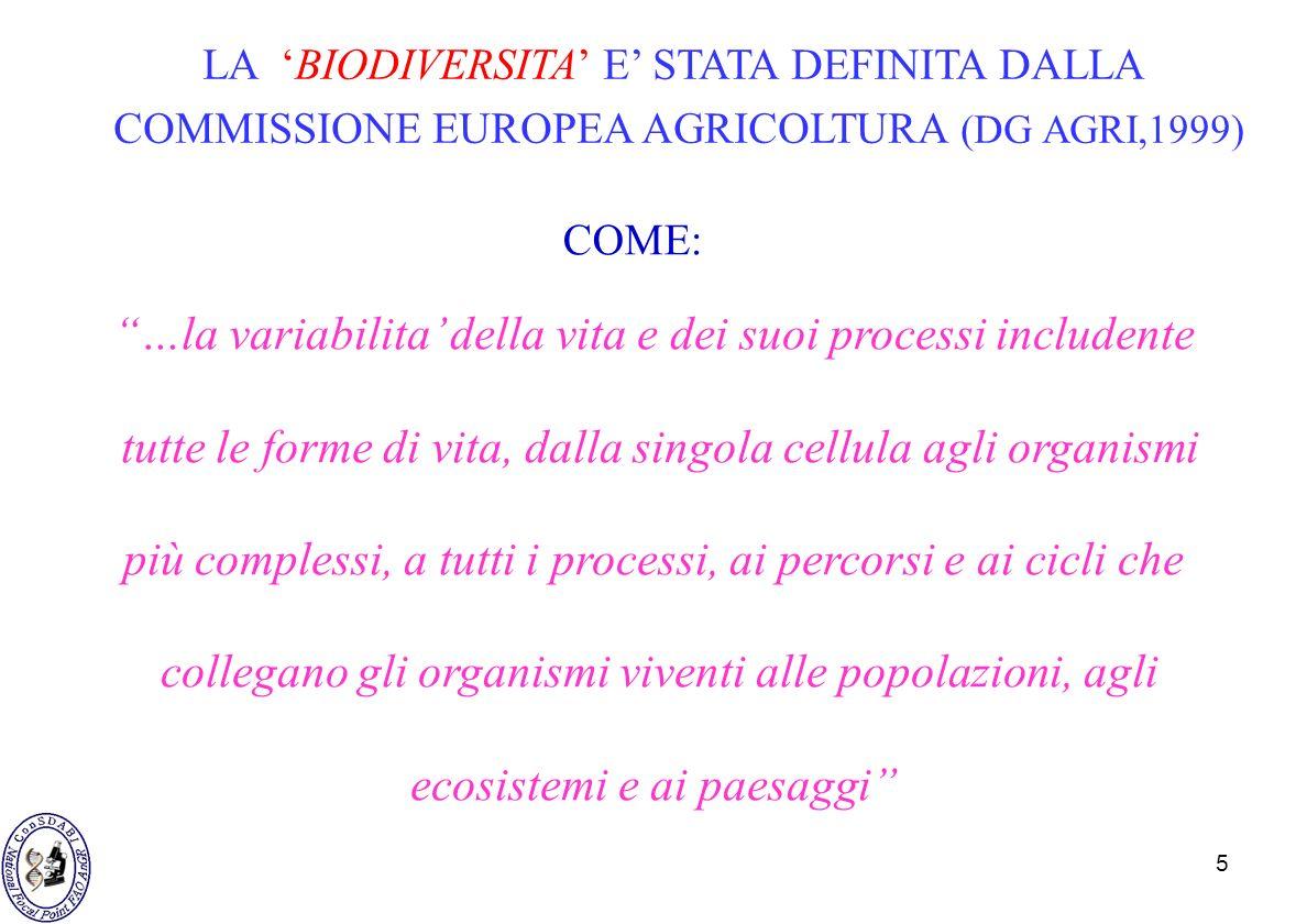 5 LA BIODIVERSITA E STATA DEFINITA DALLA COMMISSIONE EUROPEA AGRICOLTURA (DG AGRI,1999) COME: …la variabilita della vita e dei suoi processi includent