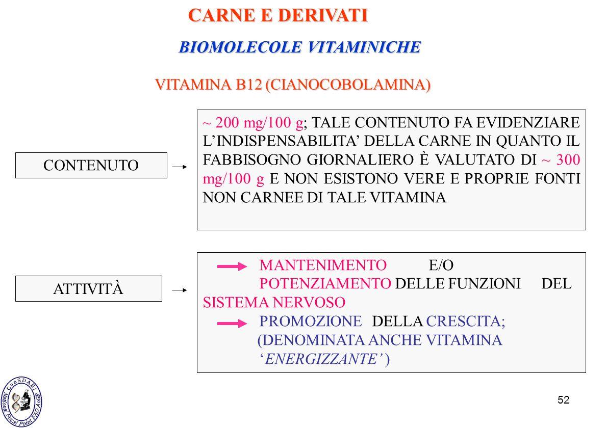 52 BIOMOLECOLE VITAMINICHE VITAMINA B12 (CIANOCOBOLAMINA) ~ 200 mg/100 g; TALE CONTENUTO FA EVIDENZIARE LINDISPENSABILITA DELLA CARNE IN QUANTO IL FAB