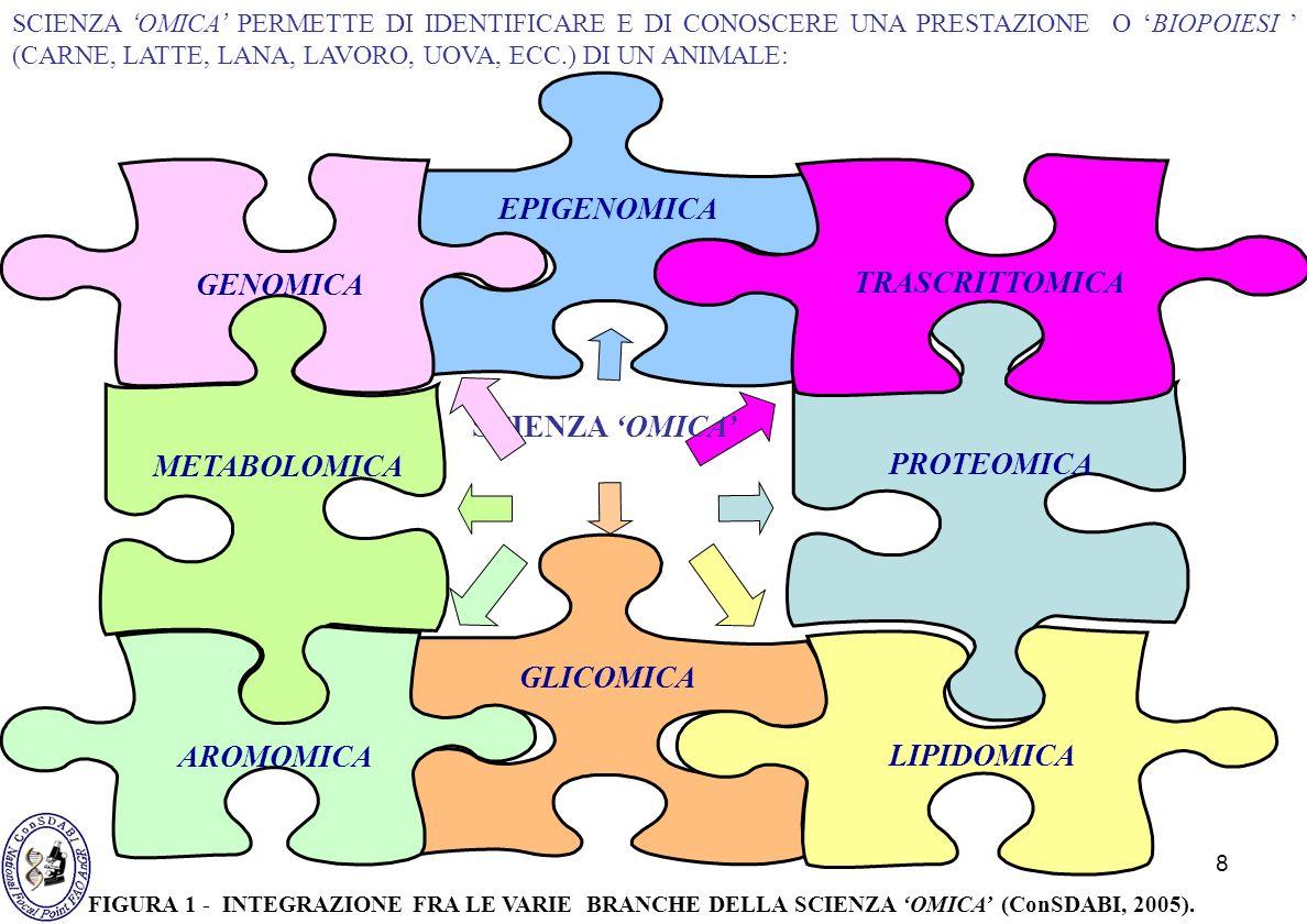 8 EPIGENOMICA METABOLOMICA GENOMICA PROTEOMICA TRASCRITTOMICA SCIENZA OMICA GLICOMICA AROMOMICA LIPIDOMICA SCIENZA OMICA PERMETTE DI IDENTIFICARE E DI