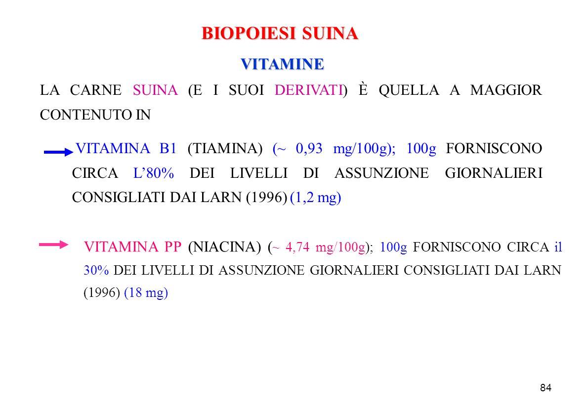 84 BIOPOIESI SUINA VITAMINE VITAMINA PP (NIACINA) ( ~ 4,74 mg/100g); 100g FORNISCONO CIRCA il 30% DEI LIVELLI DI ASSUNZIONE GIORNALIERI CONSIGLIATI DA
