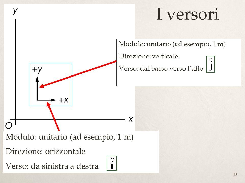 13 I versori Modulo: unitario (ad esempio, 1 m) Direzione: orizzontale Verso: da sinistra a destra Modulo: unitario (ad esempio, 1 m) Direzione: verticale Verso: dal basso verso lalto
