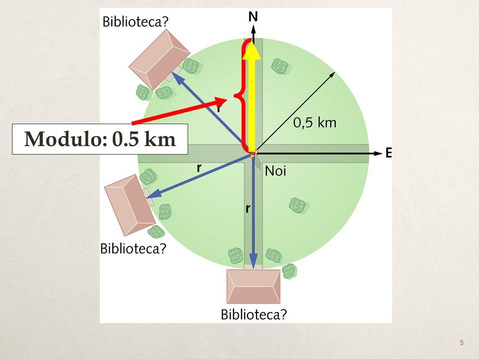 39 Lopposto di un vettore è un vettore con uguale modulo e direzione, ma verso opposto