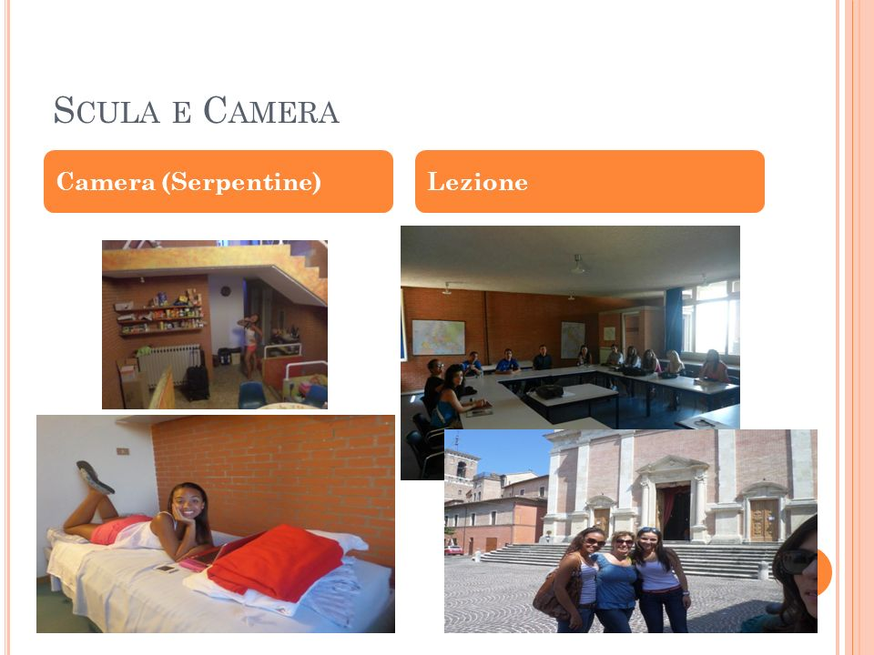 S CULA E C AMERA Camera (Serpentine)Lezione