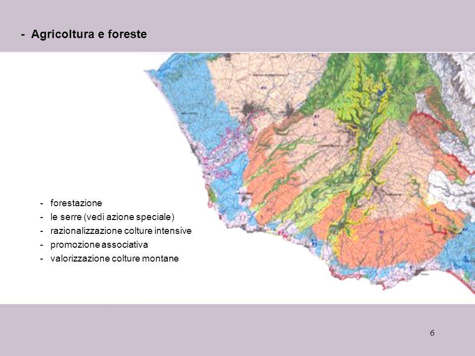 6 - Agricoltura e foreste -forestazione -le serre (vedi azione speciale) -razionalizzazione colture intensive -promozione associativa -valorizzazione