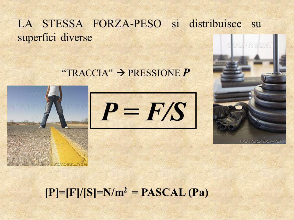 LA STESSA FORZA-PESO si distribuisce su superfici diverse TRACCIA PRESSIONE P P = F/S [P]=[F]/[S]=N/m 2 = PASCAL (Pa)