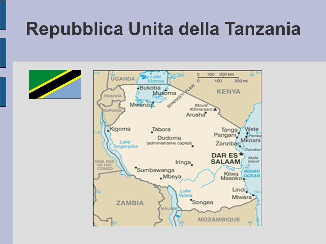 HIV/AIDS Tanzania 6,2% 1,4 milioni di persone vivono con l AIDS HIV 96.000 morti di AIDS/HIV nel 2007