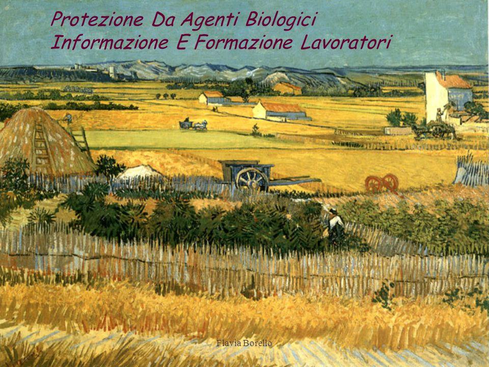 Flavia Borello Protezione Da Agenti Biologici Informazione E Formazione Lavoratori