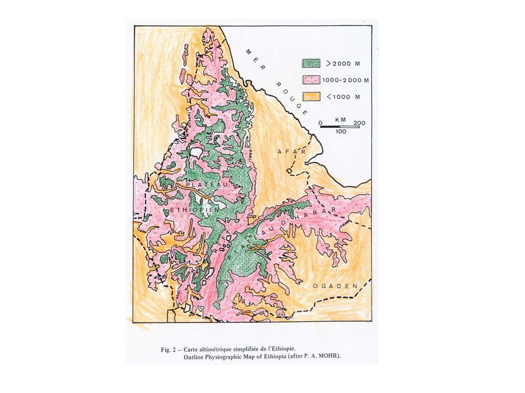 Le rocce del Precambriano o Basamento contengono la maggior parte dei depositi metallici oggi conosciuti in Etiopia.