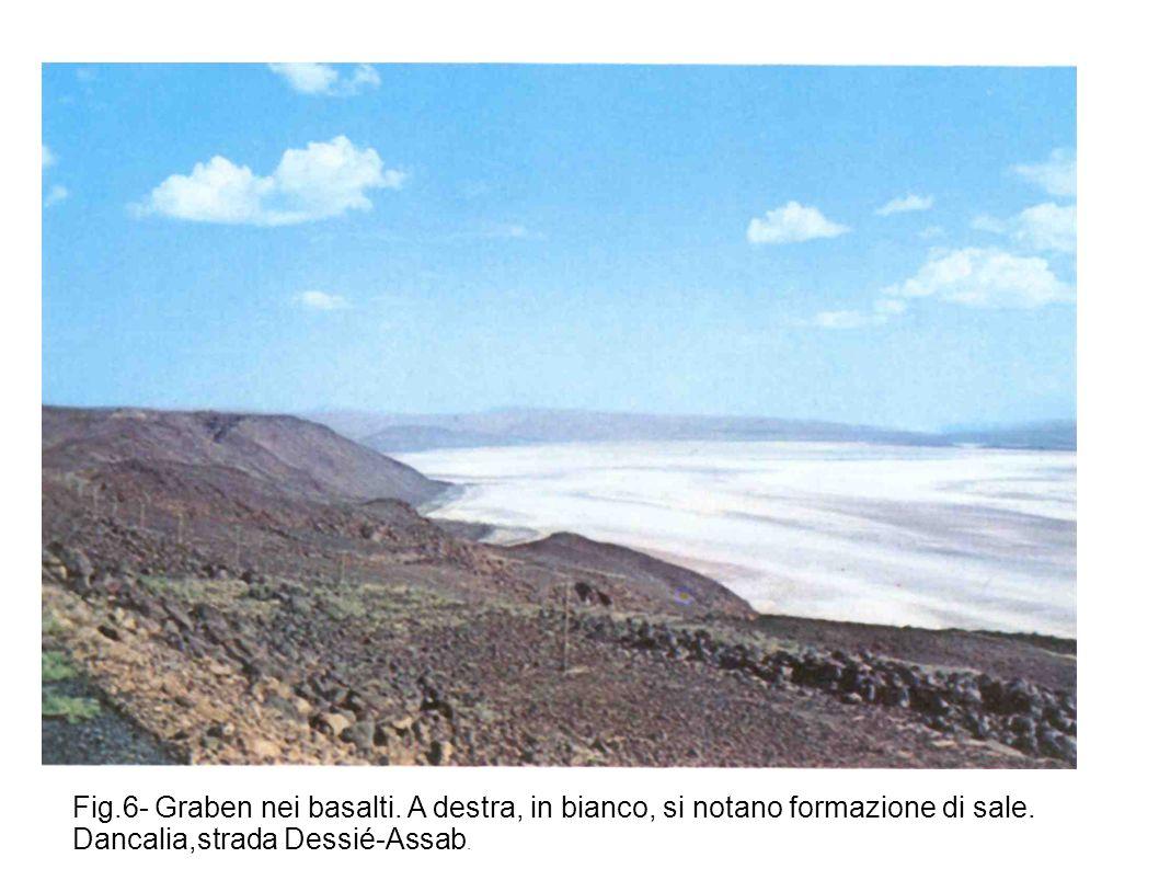 Fig.6- Graben nei basalti. A destra, in bianco, si notano formazione di sale. Dancalia,strada Dessié-Assab.