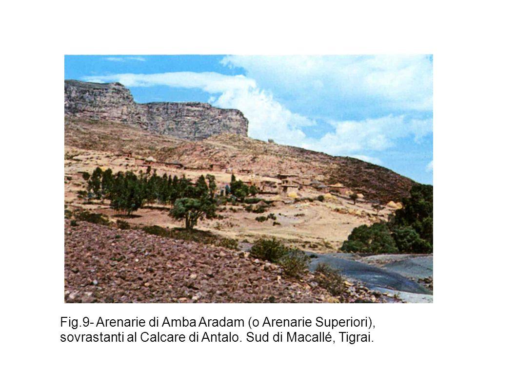 Fig.9- Arenarie di Amba Aradam (o Arenarie Superiori), sovrastanti al Calcare di Antalo. Sud di Macallé, Tigrai.