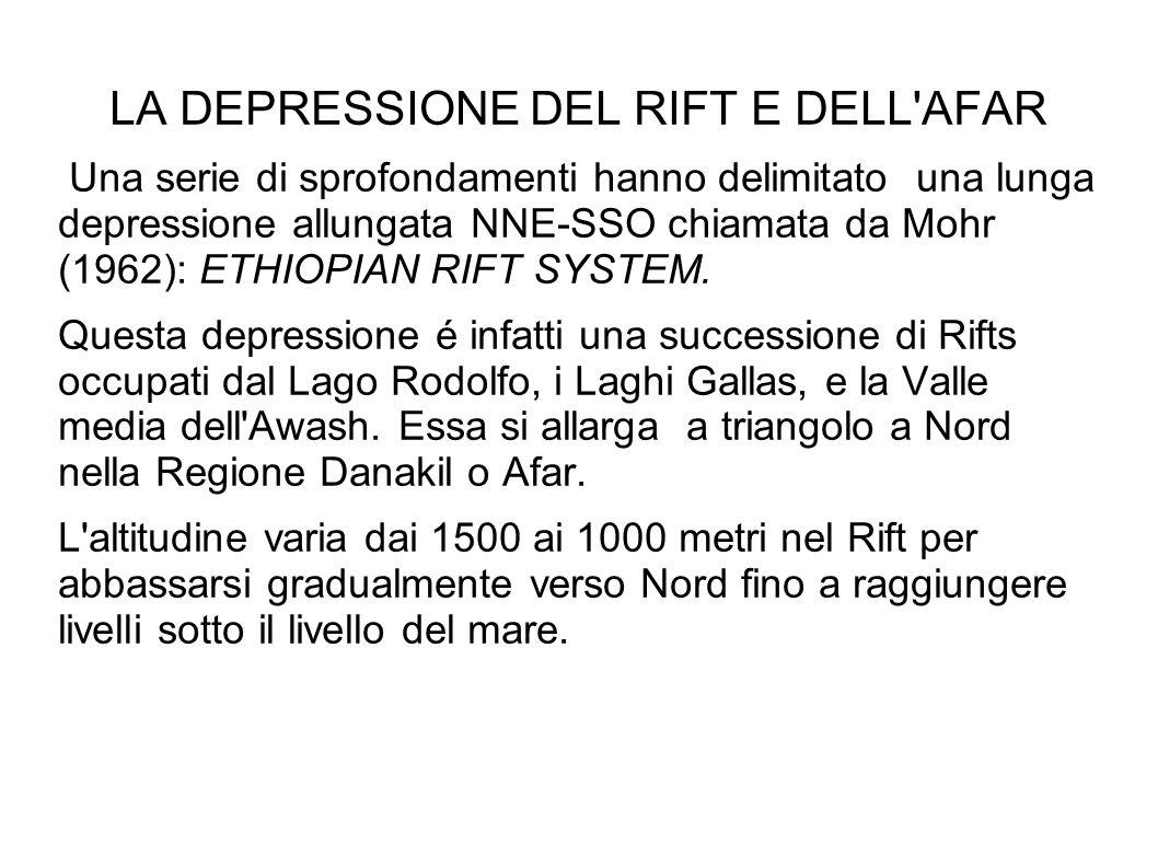 LA DEPRESSIONE DEL RIFT E DELL'AFAR Una serie di sprofondamenti hanno delimitato una lunga depressione allungata NNE-SSO chiamata da Mohr (1962): ETHI