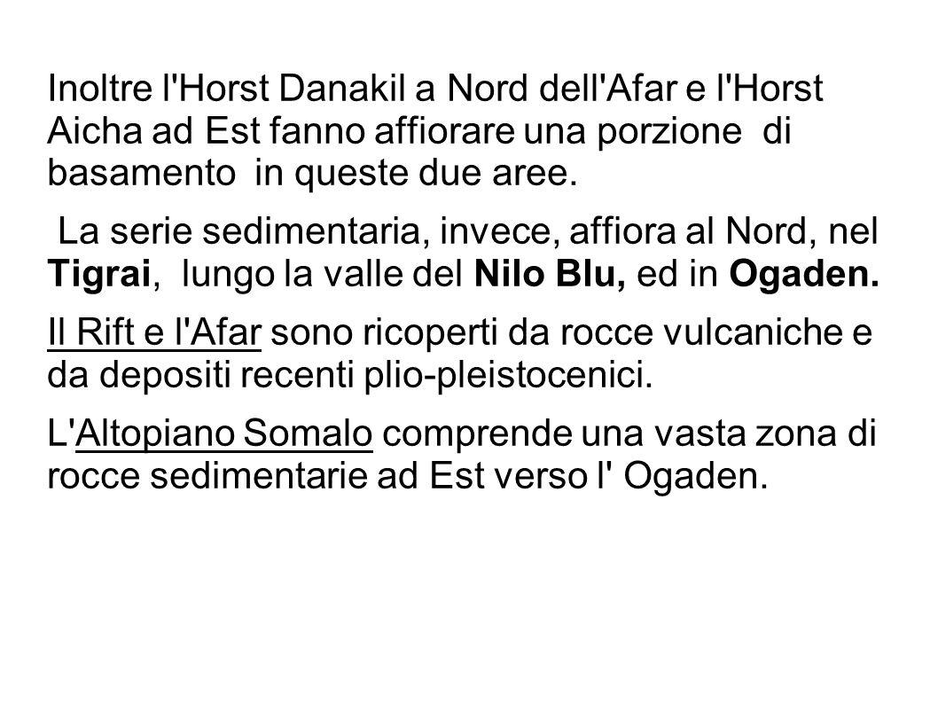 Inoltre l'Horst Danakil a Nord dell'Afar e l'Horst Aicha ad Est fanno affiorare una porzione di basamento in queste due aree. La serie sedimentaria, i