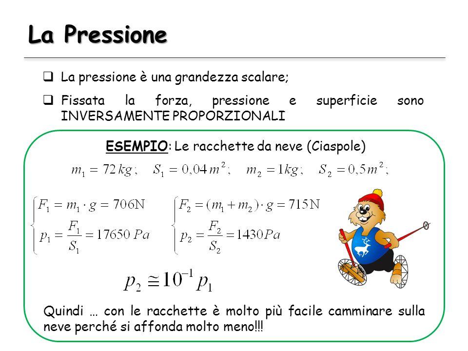 La Pressione La pressione è una grandezza scalare; Fissata la forza, pressione e superficie sono INVERSAMENTE PROPORZIONALI ESEMPIO: Le racchette da n