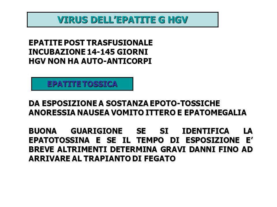 VIRUS DELLEPATITE G HGV EPATITE POST TRASFUSIONALE INCUBAZIONE 14-145 GIORNI HGV NON HA AUTO-ANTICORPI EPATITE TOSSICA DA ESPOSIZIONE A SOSTANZA EPOTO
