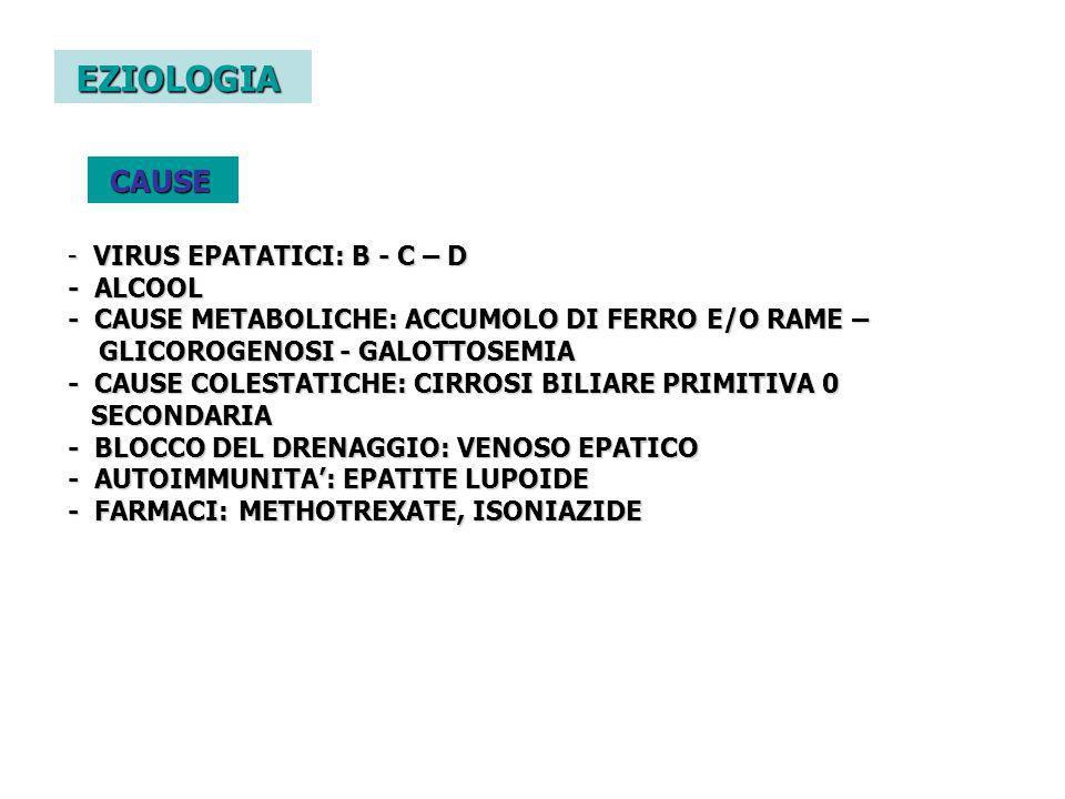 EZIOLOGIA CAUSE - VIRUS EPATATICI: B - C – D - ALCOOL - CAUSE METABOLICHE: ACCUMOLO DI FERRO E/O RAME – GLICOROGENOSI - GALOTTOSEMIA - CAUSE COLESTATI