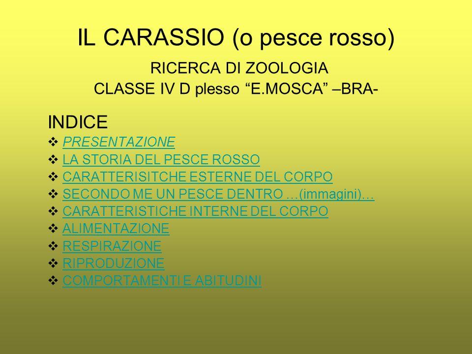 IL CARASSIO (o pesce rosso) RICERCA DI ZOOLOGIA CLASSE IV D plesso E.MOSCA –BRA- INDICE PRESENTAZIONE LA STORIA DEL PESCE ROSSO CARATTERISITCHE ESTERN