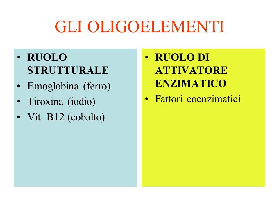 GLI OLIGOELEMENTI RUOLO STRUTTURALE Emoglobina (ferro) Tiroxina (iodio) Vit. B12 (cobalto) RUOLO DI ATTIVATORE ENZIMATICO Fattori coenzimatici