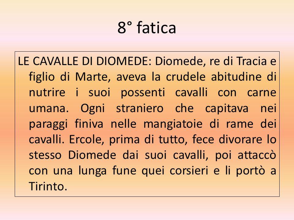 8° fatica LE CAVALLE DI DIOMEDE: Diomede, re di Tracia e figlio di Marte, aveva la crudele abitudine di nutrire i suoi possenti cavalli con carne uman