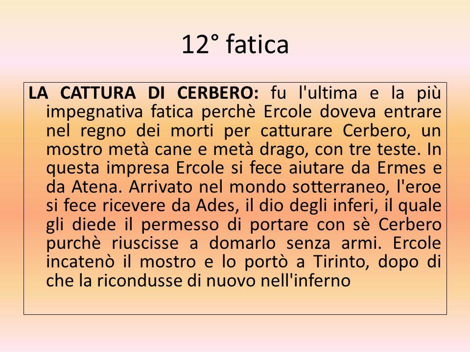 12° fatica LA CATTURA DI CERBERO: fu l'ultima e la più impegnativa fatica perchè Ercole doveva entrare nel regno dei morti per catturare Cerbero, un m