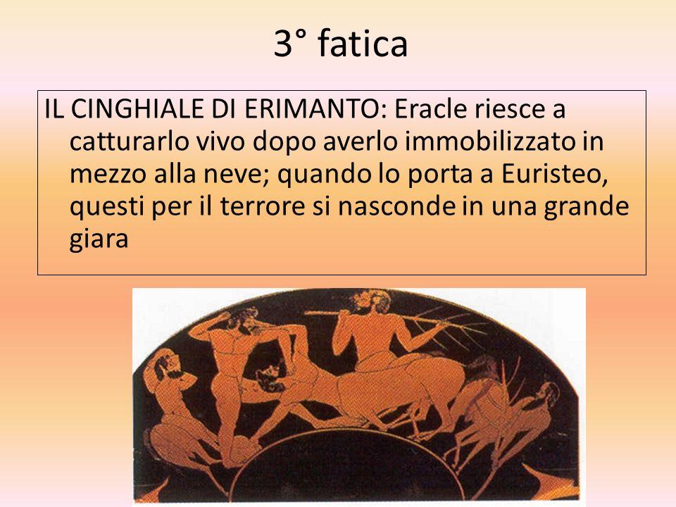 3° fatica IL CINGHIALE DI ERIMANTO: Eracle riesce a catturarlo vivo dopo averlo immobilizzato in mezzo alla neve; quando lo porta a Euristeo, questi p