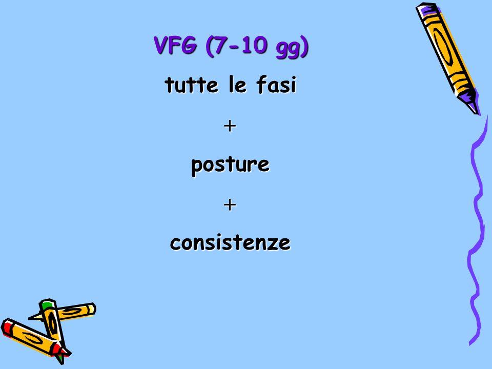 VFG (7-10 gg) tutte le fasi postureconsistenze