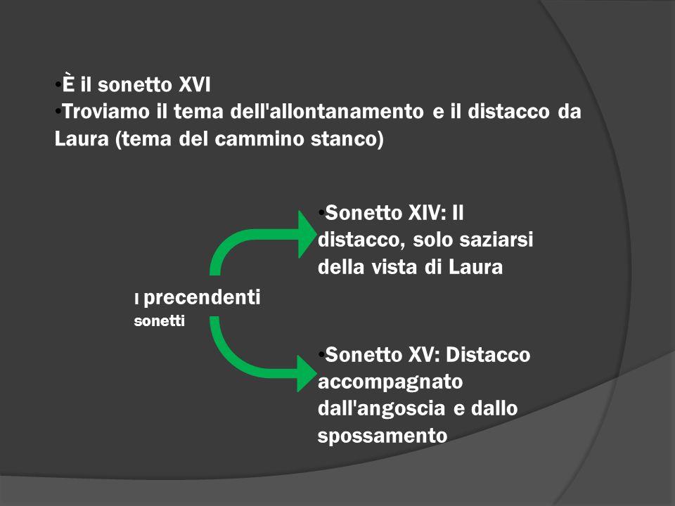 È il sonetto XVI Troviamo il tema dell'allontanamento e il distacco da Laura (tema del cammino stanco) I precendenti sonetti Sonetto XIV: Il distacco,