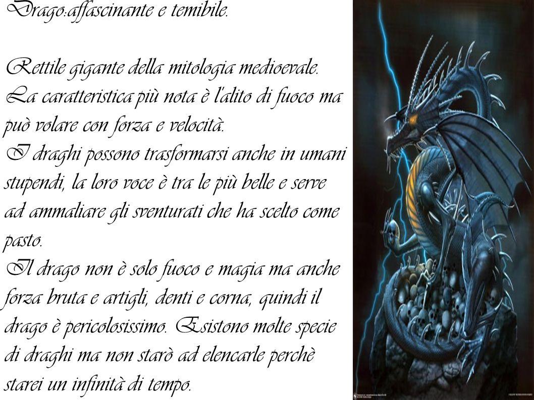Drago:affascinante e temibile.Rettile gigante della mitologia medioevale.