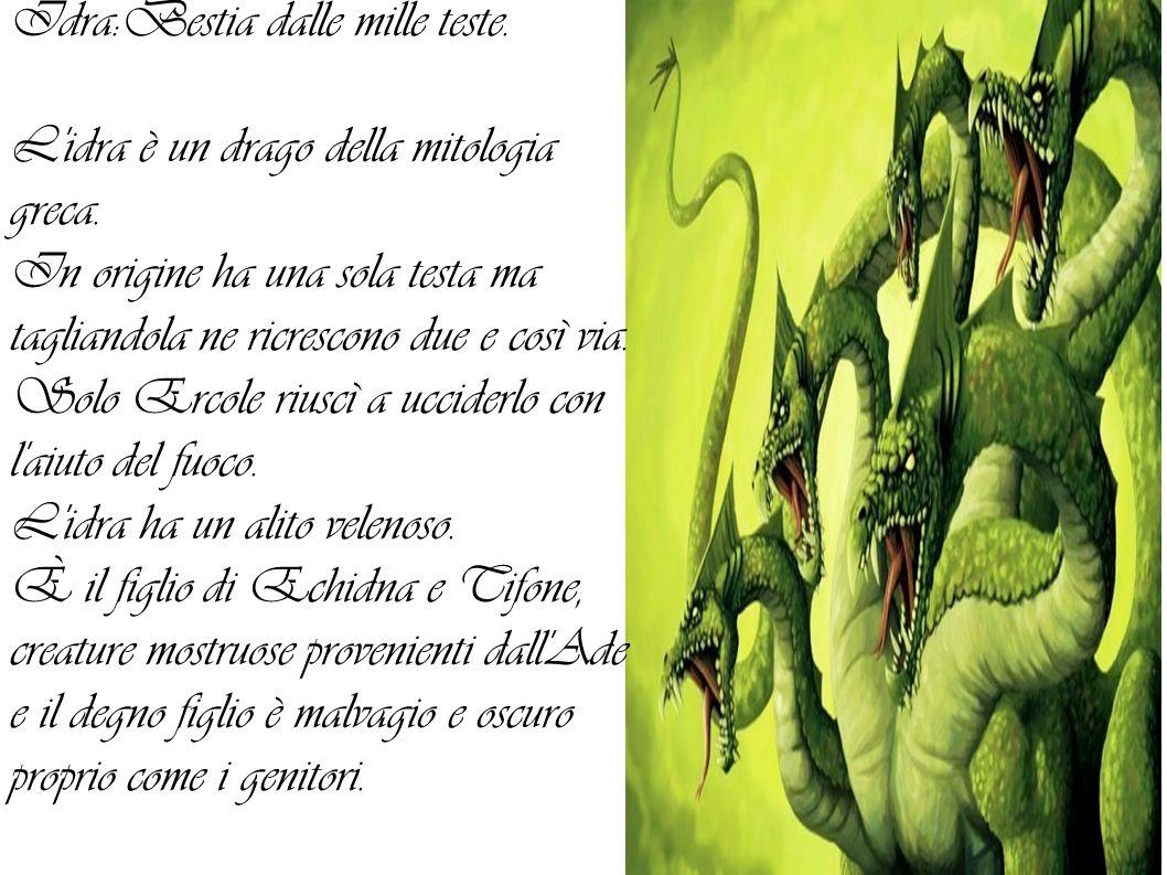 Idra:Bestia dalle mille teste.L idra è un drago della mitologia greca.