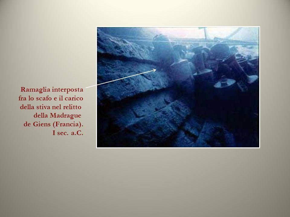 Ramaglia interposta fra lo scafo e il carico della stiva nel relitto della Madrague de Giens (Francia).