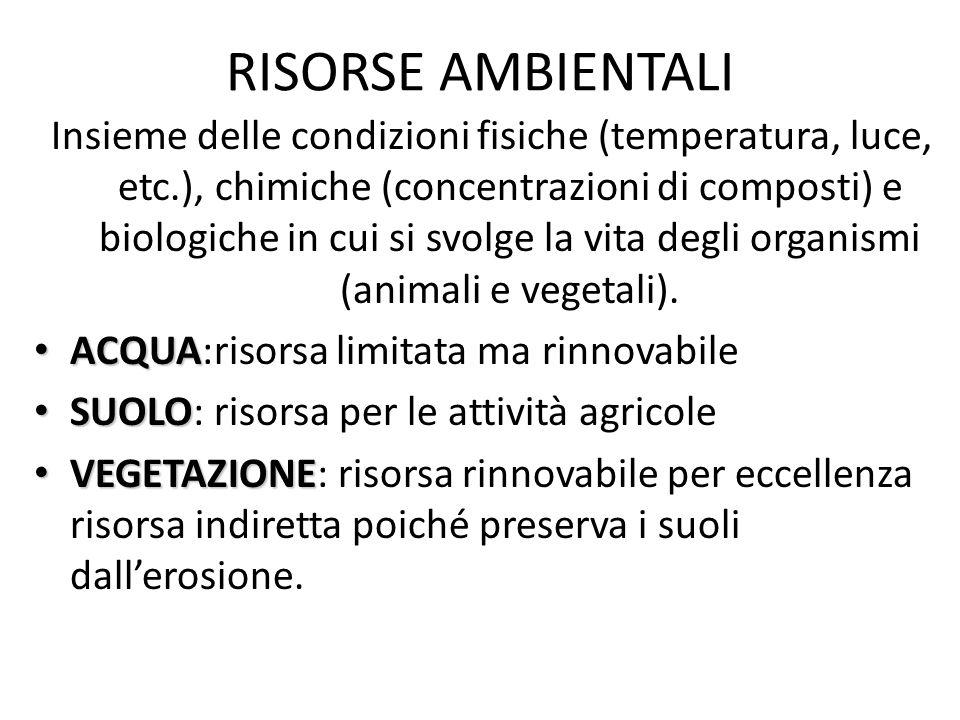 RISORSE AMBIENTALI Insieme delle condizioni fisiche (temperatura, luce, etc.), chimiche (concentrazioni di composti) e biologiche in cui si svolge la