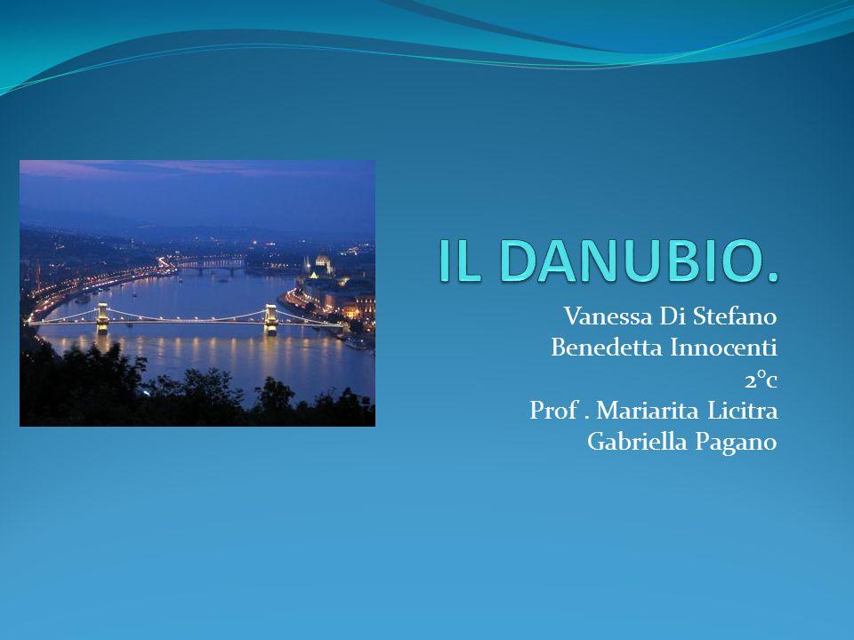 Vanessa Di Stefano Benedetta Innocenti 2°c Prof. Mariarita Licitra Gabriella Pagano