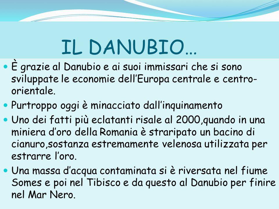 LECOSISTEMA DEL DANUBIO…..Lecosistema del Danubio era condannato a morte.