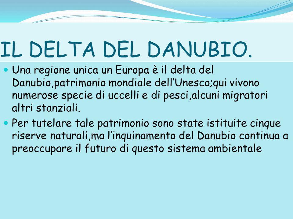 IL DELTA DEL DANUBIO. Una regione unica un Europa è il delta del Danubio,patrimonio mondiale dellUnesco;qui vivono numerose specie di uccelli e di pes