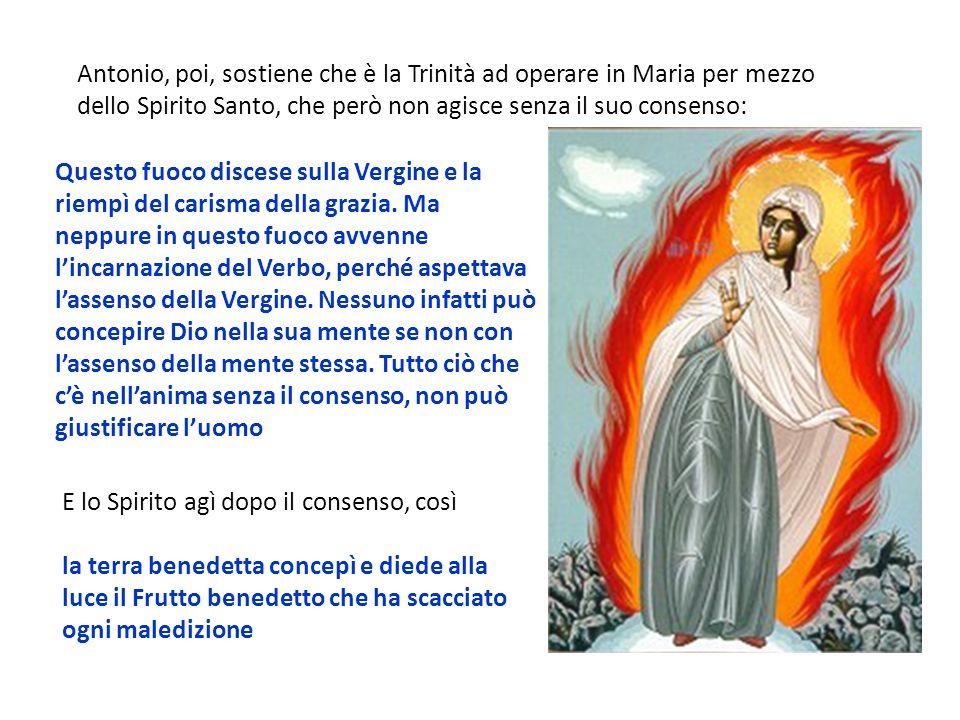 Questo fuoco discese sulla Vergine e la riempì del carisma della grazia. Ma neppure in questo fuoco avvenne lincarnazione del Verbo, perché aspettava