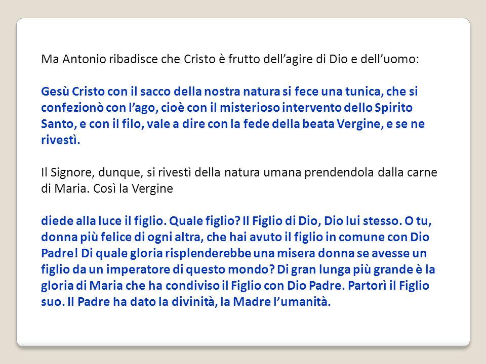 Ma Antonio ribadisce che Cristo è frutto dellagire di Dio e delluomo: Gesù Cristo con il sacco della nostra natura si fece una tunica, che si confezio