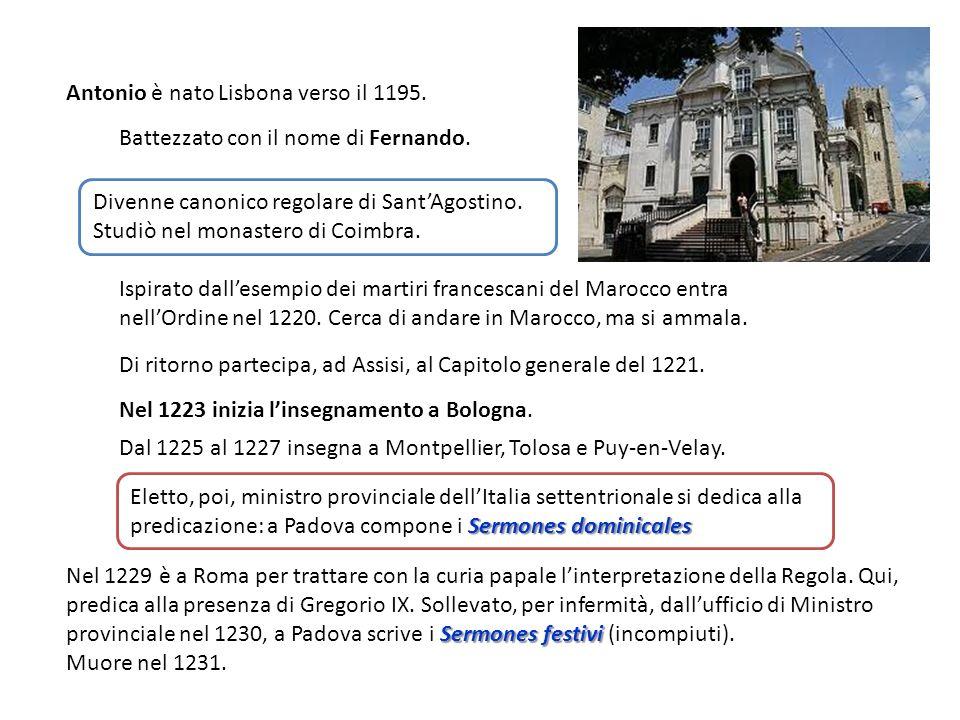 Sermones festivi Nel 1229 è a Roma per trattare con la curia papale linterpretazione della Regola. Qui, predica alla presenza di Gregorio IX. Sollevat