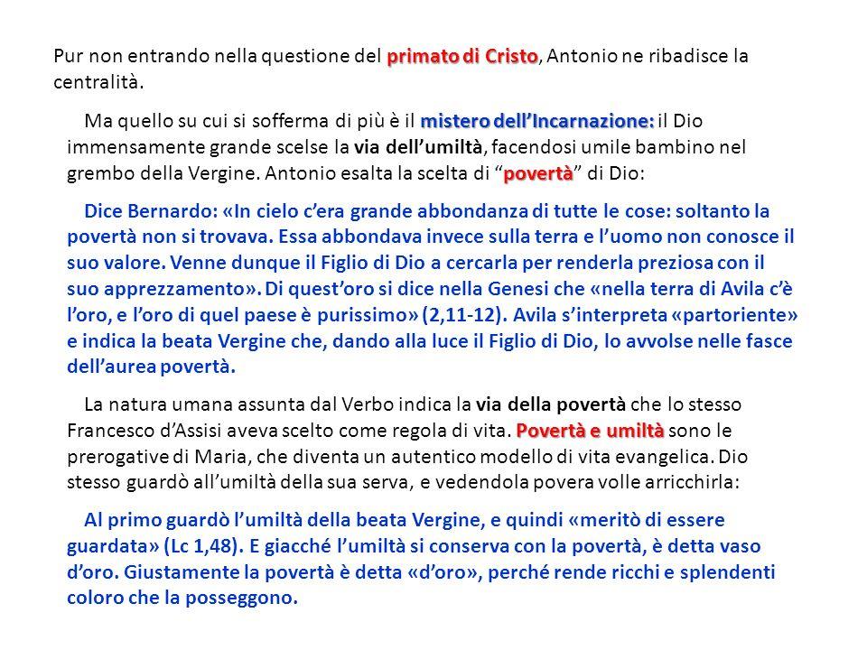 primato di Cristo Pur non entrando nella questione del primato di Cristo, Antonio ne ribadisce la centralità. mistero dellIncarnazione: povertà Ma que