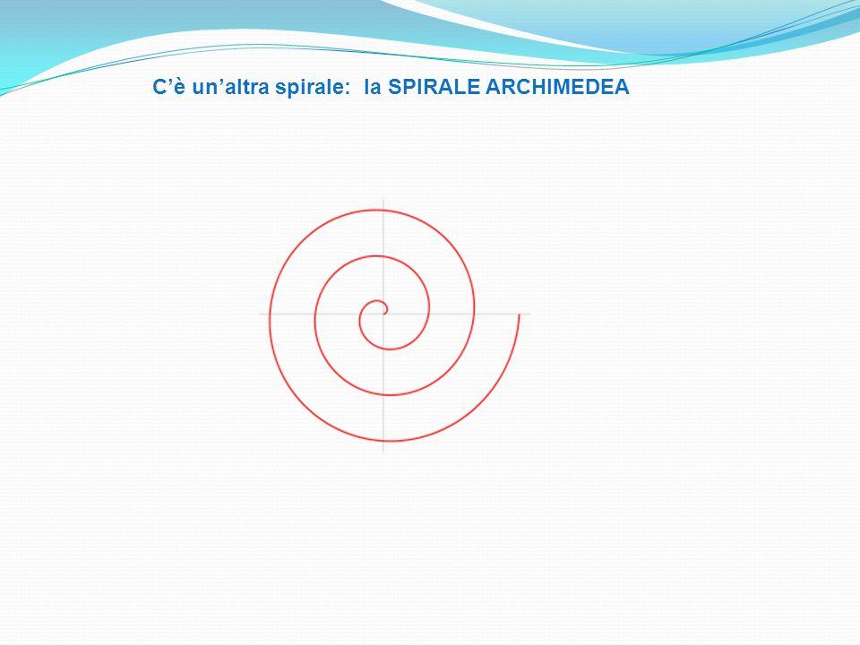 Cè unaltra spirale: la SPIRALE ARCHIMEDEA