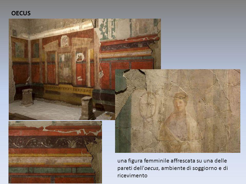 OECUS una figura femminile affrescata su una delle pareti dell'oecus, ambiente di soggiorno e di ricevimento