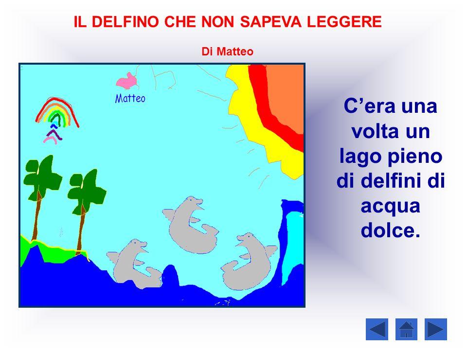 IL DELFINO CHE NON SAPEVA LEGGERE Di Matteo Cera una volta un lago pieno di delfini di acqua dolce.