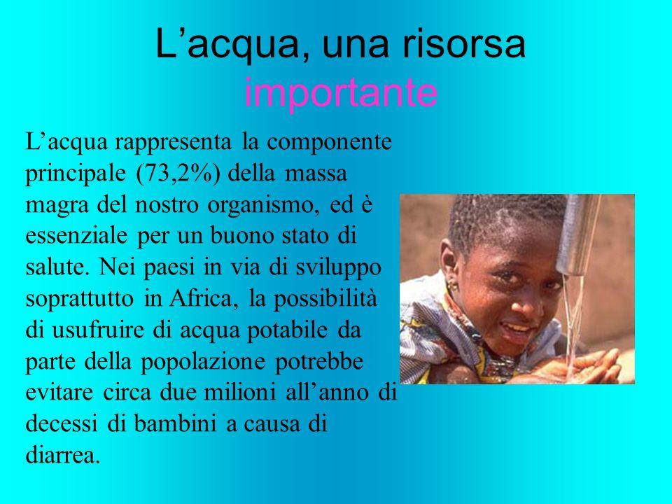 Lacqua rappresenta la componente principale (73,2%) della massa magra del nostro organismo, ed è essenziale per un buono stato di salute. Nei paesi in