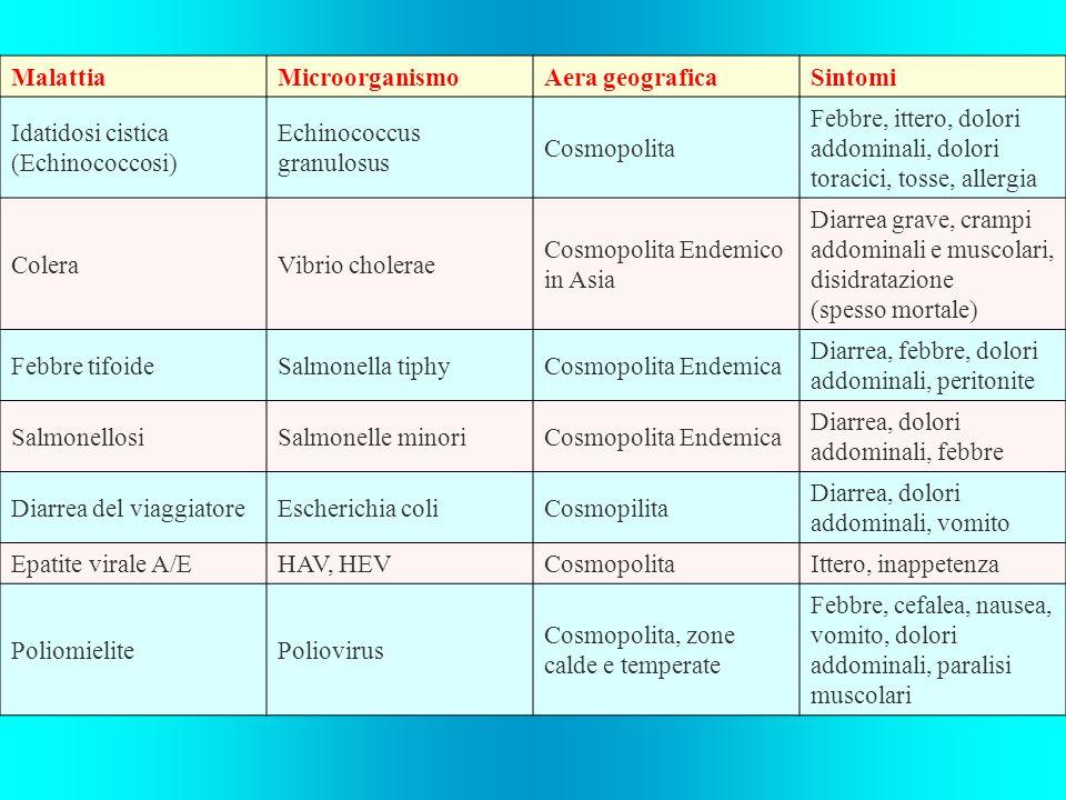 MalattiaMicroorganismoAera geograficaSintomi Idatidosi cistica (Echinococcosi) Echinococcus granulosus Cosmopolita Febbre, ittero, dolori addominali,
