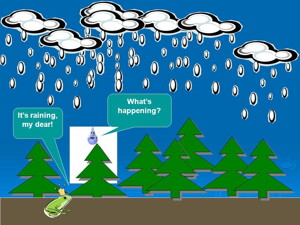Whats happening? Its raining, my dear!
