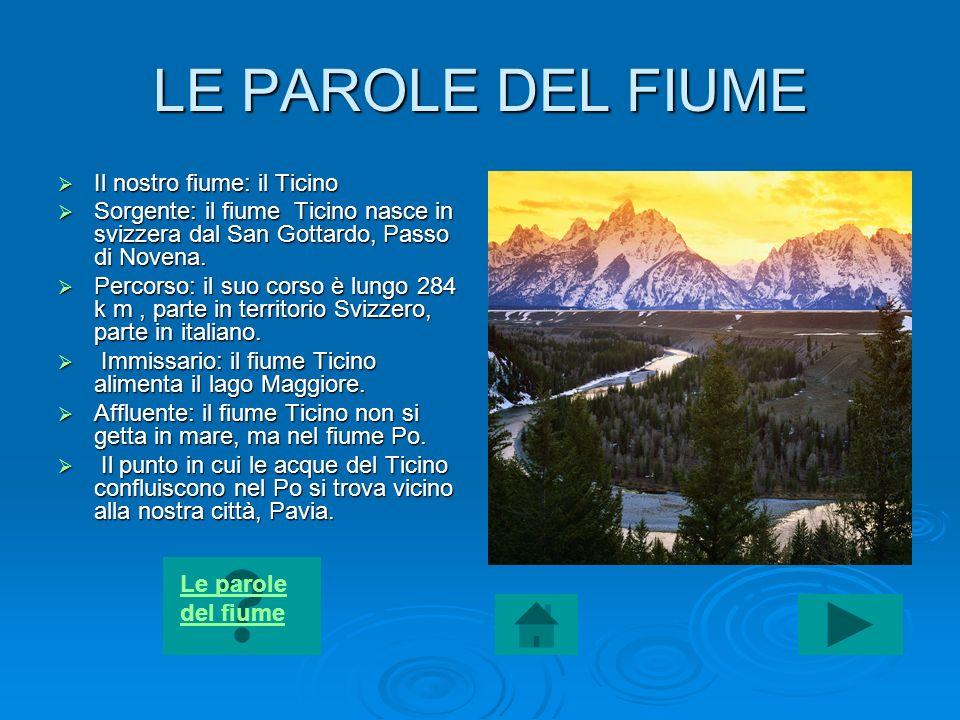 LE PAROLE DEL FIUME Il nostro fiume: il Ticino Il nostro fiume: il Ticino Sorgente: il fiume Ticino nasce in svizzera dal San Gottardo, Passo di Noven