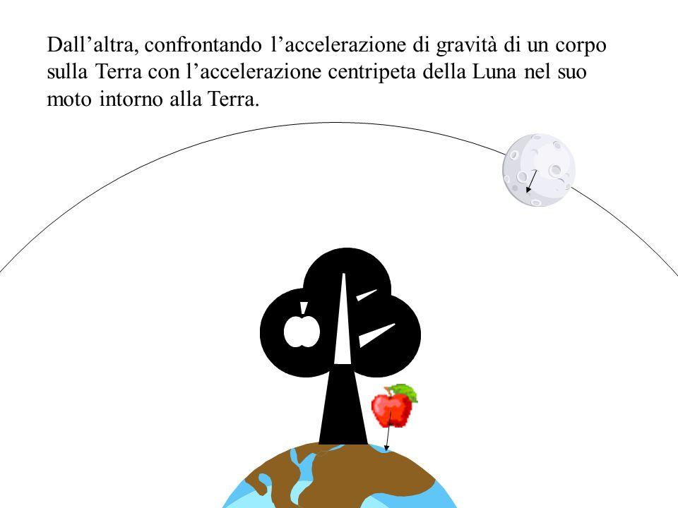 Dallaltra, confrontando laccelerazione di gravità di un corpo sulla Terra con laccelerazione centripeta della Luna nel suo moto intorno alla Terra.