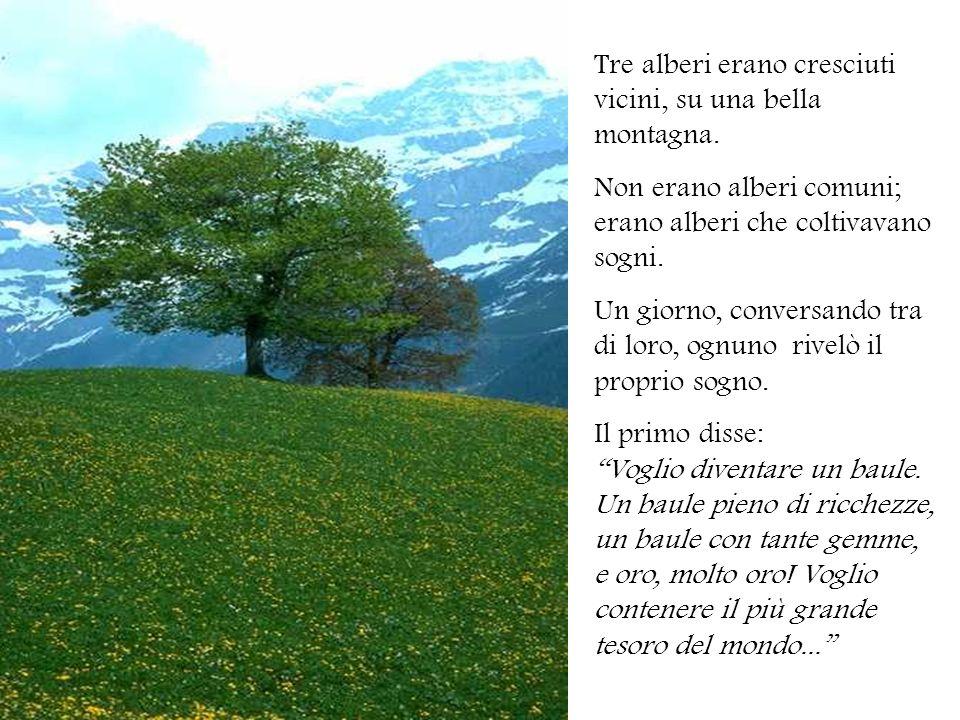 Tre alberi erano cresciuti vicini, su una bella montagna. Non erano alberi comuni; erano alberi che coltivavano sogni. Un giorno, conversando tra di l