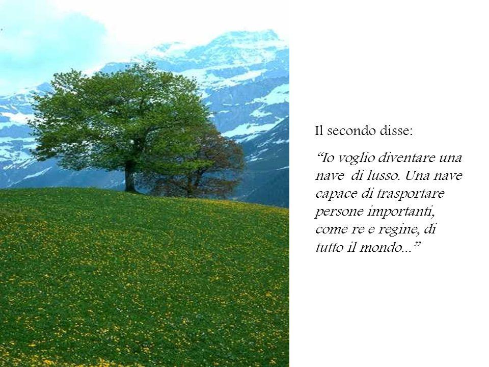 Il terzo, invece, dichiarò: Io voglio rimanere qui, sulle montagne...