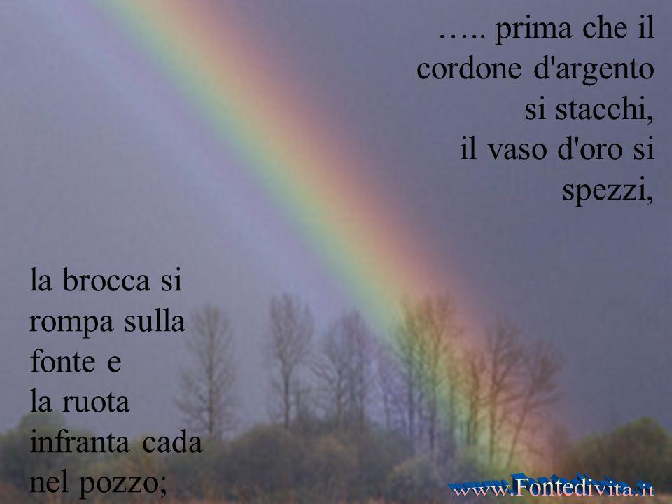 ….. prima che il sole, la luce, la luna e le stelle si oscurino, e le nuvole tornino dopo la pioggia;