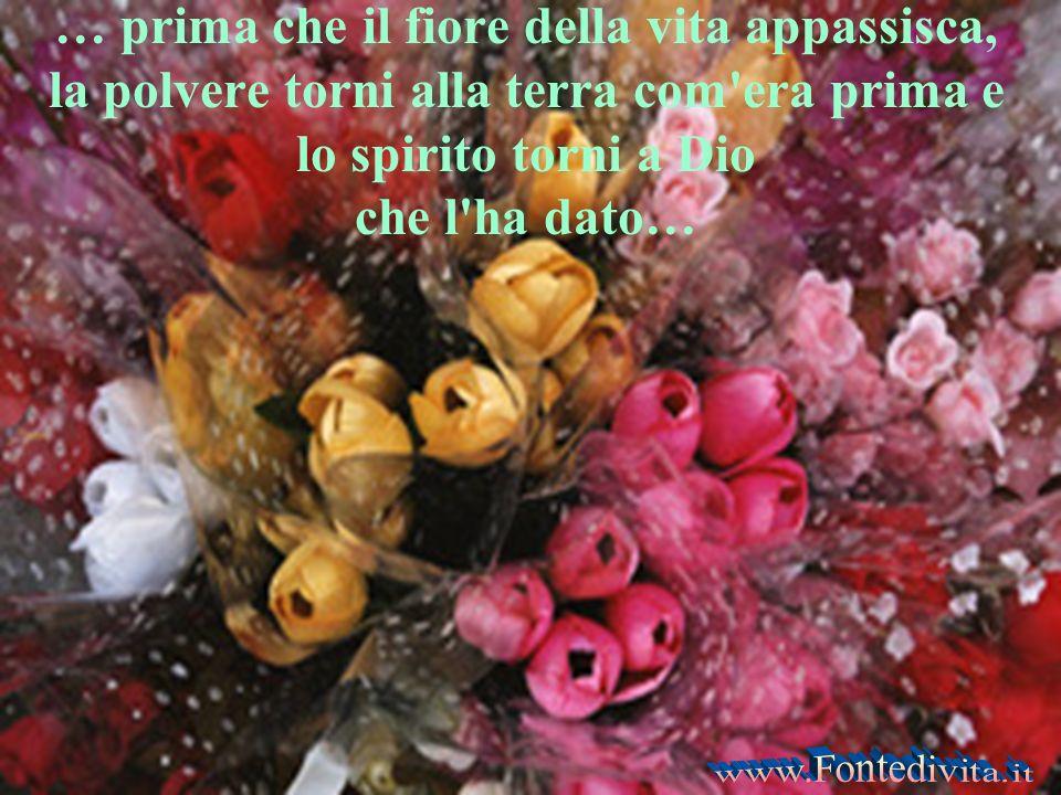 … prima che il fiore della vita appassisca, la polvere torni alla terra com era prima e lo spirito torni a Dio che l ha dato…