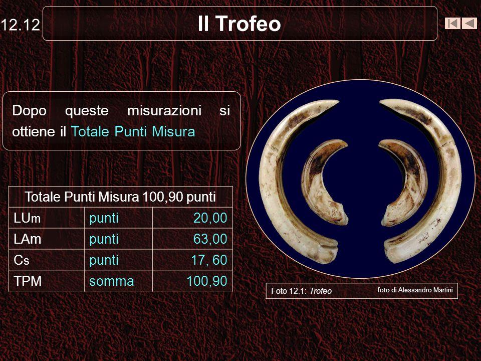 Il Trofeo Dopo queste misurazioni si ottiene il Totale Punti Misura 12.12 Foto 12.1: Trofeo foto di Alessandro Martini Totale Punti Misura 100,90 punti LU m punti20,00 LAmpunti63,00 CsCs punti17, 60 TPMsomma100,90